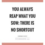 you-always-reap-what-you-sow-there-is-no-shortcut-quote-1
