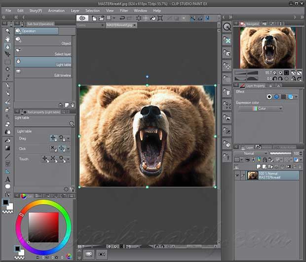 CLIP STUDIO PAINT EX Crack With Serial Key Download