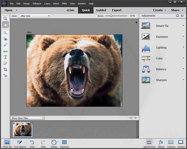 Adobe Photoshop Elements 2018 Licence key Full Version