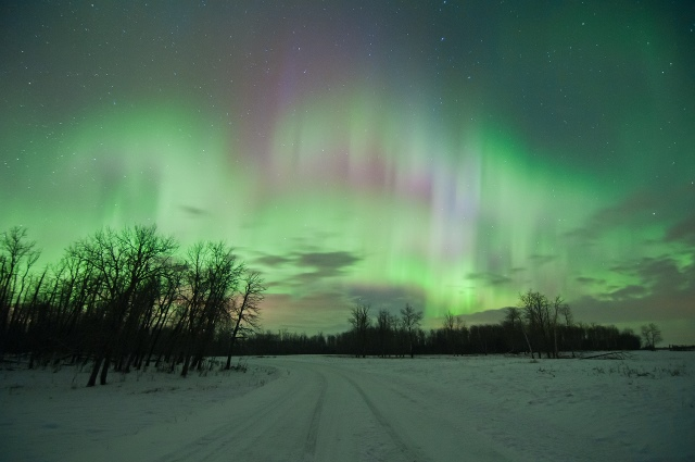 Northern Lights over Elk Island