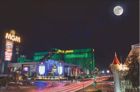 MGM hotel Fascade Las Vegas