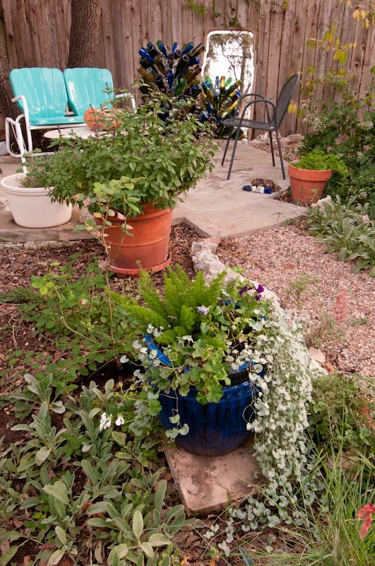 Image Result For Austin Vegetable Gardening Schedule