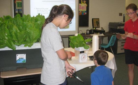 Students at a Pennsylvania elementary school grow enough in their Eartbox gardens to feed the entire school on World Food Day each year.