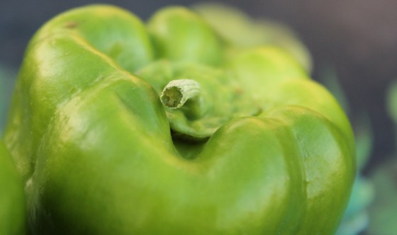 Big-Bertha-Bell-Pepper