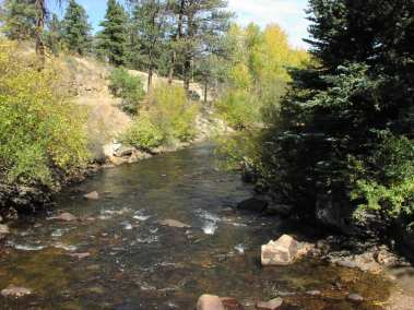 River with Trees - Finding Gold in Estes Park
