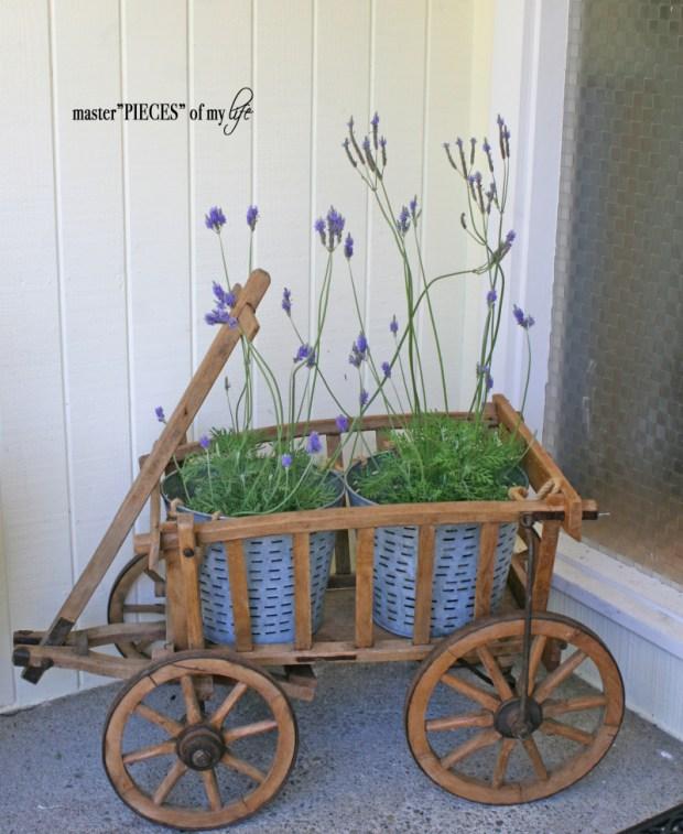 Through the seasons - a goat cart 2