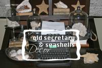 Secretary seashells 1