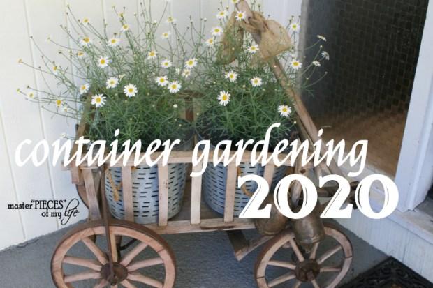 Container gardening 2020