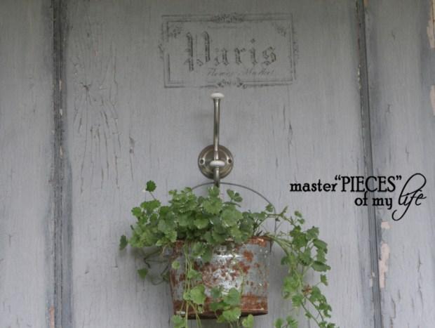 Container gardening 2020 6