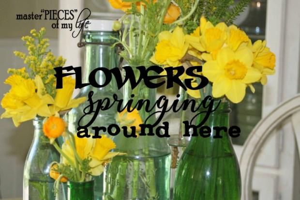 Flowers springing
