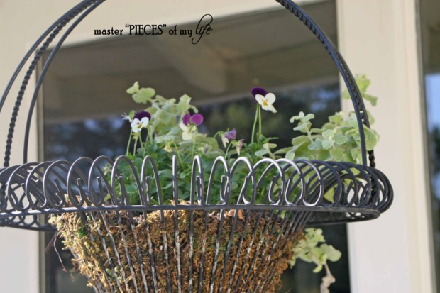 Fall container gardening2