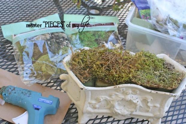 Moss planter4