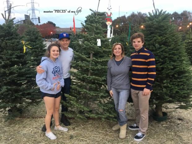 Christmas silver tip tree2