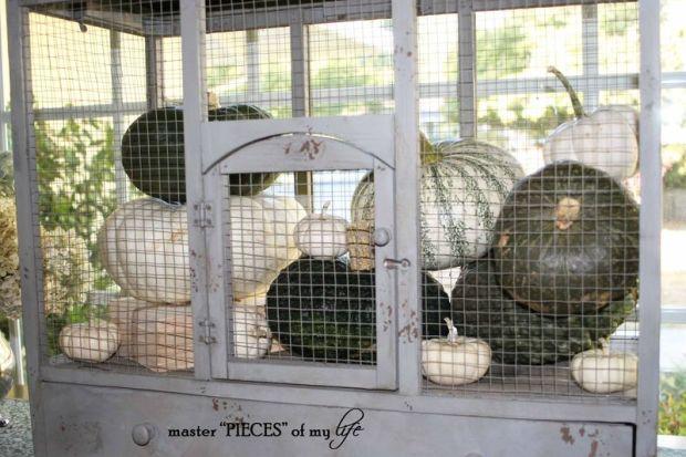 Pumpkin birdcage 3