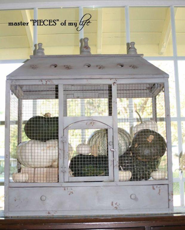 Pumpkin birdcage 8