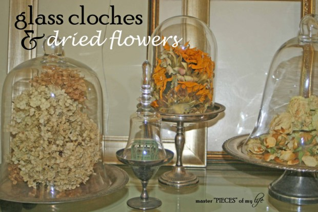 Cloches & dried flowers1