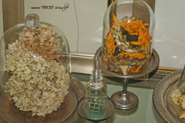 Cloches & dried flowers9