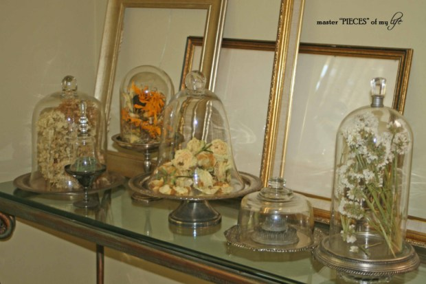 Cloches & dried flowers10
