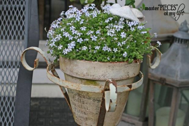 Container gardening 2020 10
