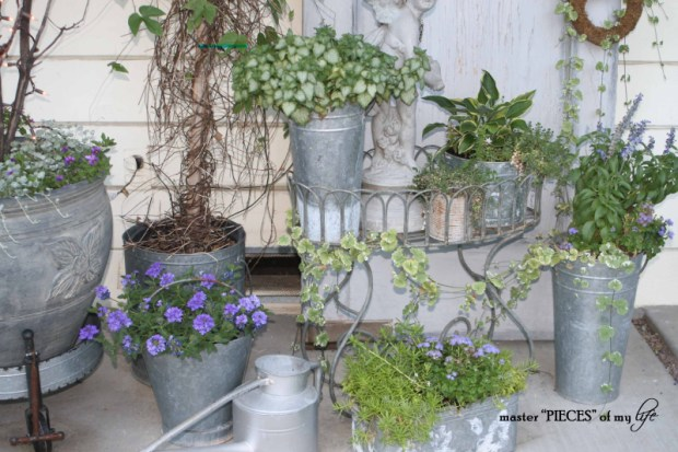 Gray container gardening2