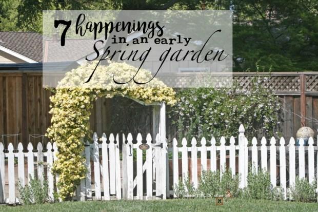 7 happenings spring garden