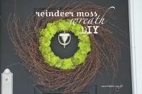 Reindeer moss wreath