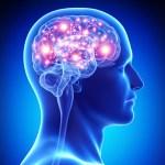 Maneras de Preservar tu Poder Cerebral