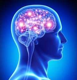 poder-del-cerebro