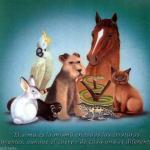 1OO CURIOSIDADES DEL REINO ANIMAL