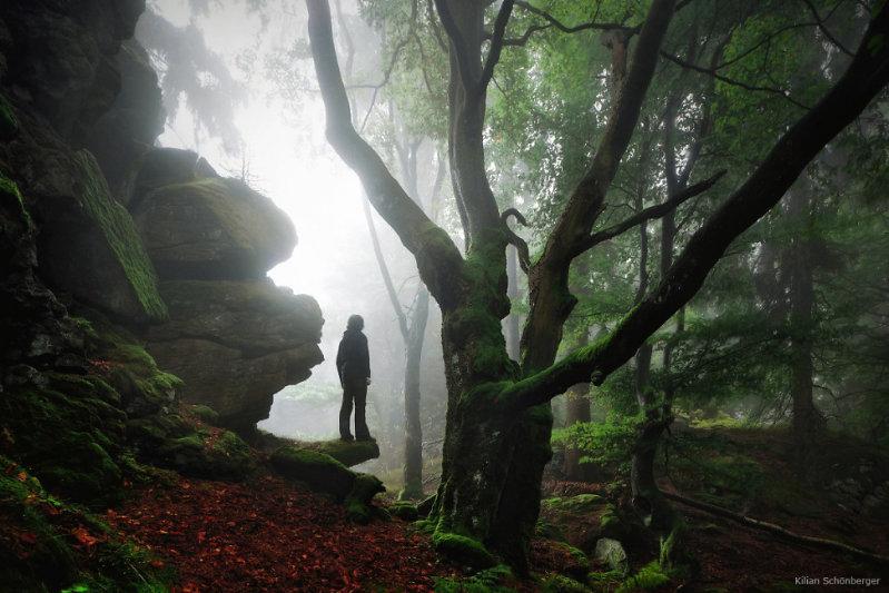 Woodland, Kilian Schoenberger