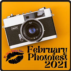 February Photofest 2021 badge