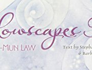 Shadowscapes Tarot (78 card deck and a 264 page book)