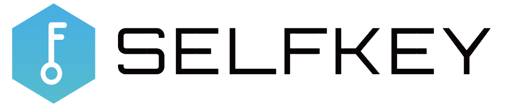 selfkey, selfkey review, selfkey analysis, key review, key analysis