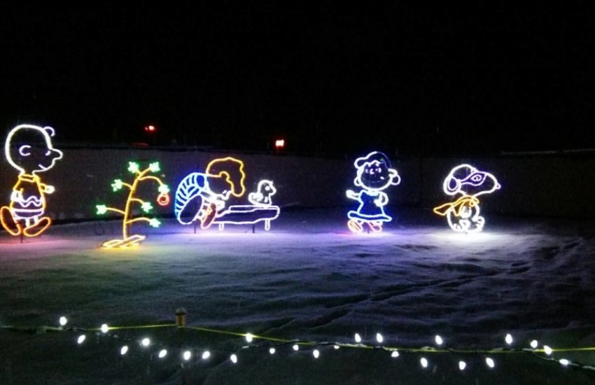BC Wildlife Park Wildlights Charlie Brown