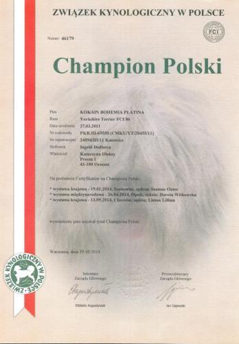 KOKAIN Ch.Pl