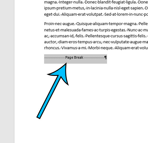 how to remove a page break in Microsoft Word for Office 365