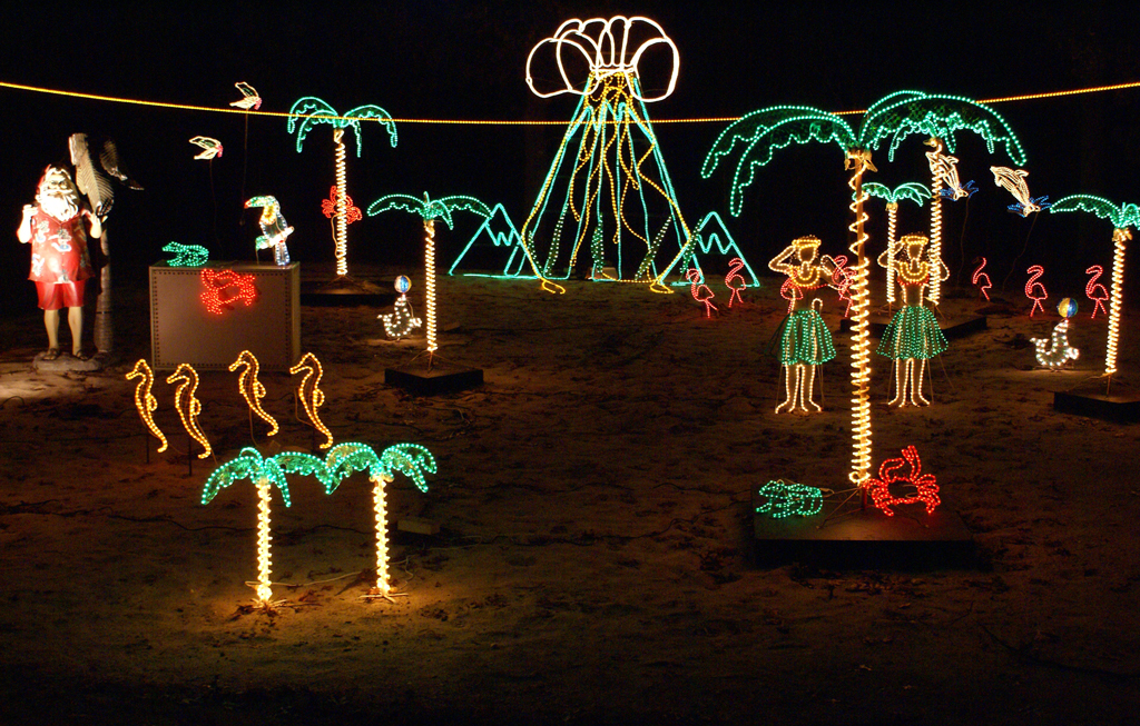 girl-scouts-2016-holiday-light-show-2 - Girl Scouts Of Suffolk County Announces New Location For 13th Annual