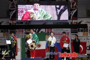 Carlos Navarro Valdez - Taekwondo Mexico_15
