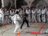 2010-05-31_(a)x_masTaekwondo_Seminario-Capacitacion-Taekwondo-Costa-Rica_600_03