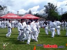 2010-05-31_(a)x_masTaekwondo_Seminario-Capacitacion-Taekwondo-Costa-Rica_600_07