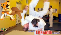 masTaekwondo_Ju-Jitsu