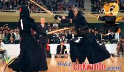 masTaekwondo_Kendo