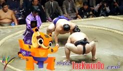 masTaekwondo_Sumo