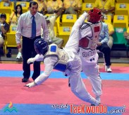 2010-08-04_(12985)x_Gabriel-Mercedes3-Taekwondo_JCC2010