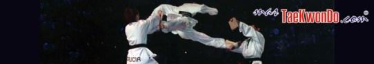 2010-09-30_(16822)x_masTaekwondo_Exhibicion-Galicia-Meilan_640