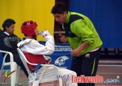 2010-10-06_(17088)x_masTaekwondo_Copa-LG-Colombia_600_02