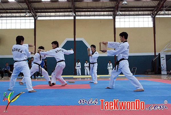 2010-10-07_masTaekwondo_Chimborazo-2010_Ecuador_600_04