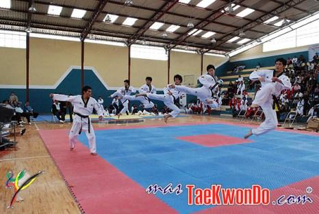 2010-10-07_masTaekwondo_Chimborazo-2010_Ecuador_600_08