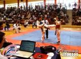 2010-11-30_masTaekwondo_Copa-Chile_HD-640_07