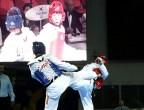 masTaekwondo_Liga-Profesional-Moscu-2010_06